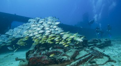 Scuba Wreck Diving Mexico